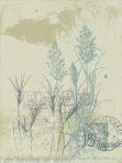 weeds004